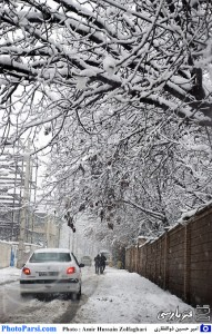 PhotoParsi_Shiraz_Snow_13