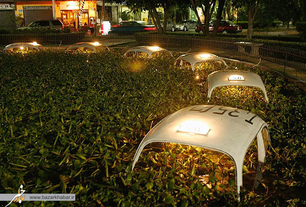 باغچهای ازسقف تاکسی در یک حوضچه مکزیکوسیتی